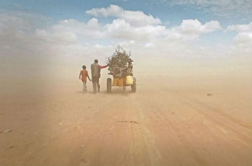 Ai Weiwei'nin İnsan Seli | Yazan Ayşe Kırca