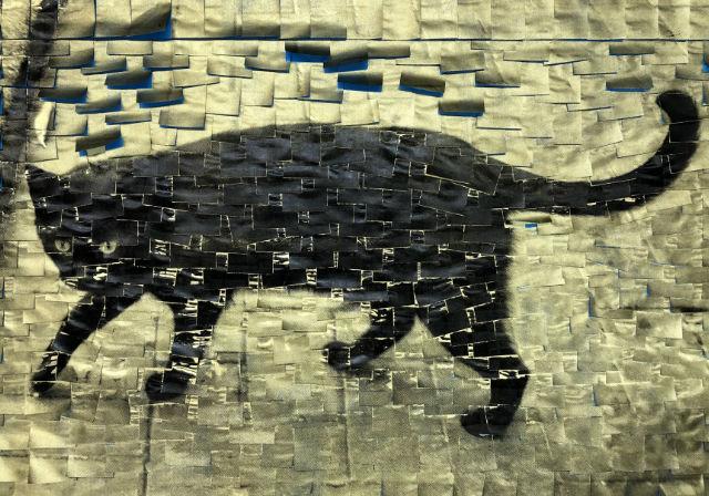 Bir Kedi Gördüm Sanki | Yazan Zuhal Demirarslan