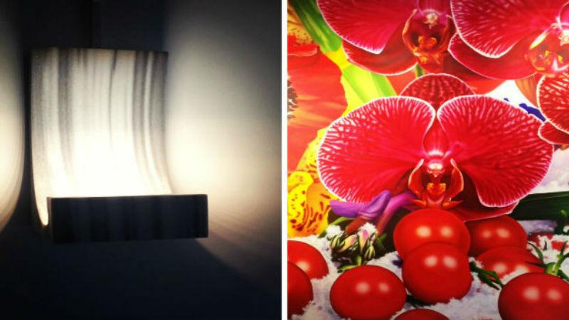 Thierry Dreyfuss-Element De Lumiere/Marc Quinn-Flower Paintings-Krampf Gallery